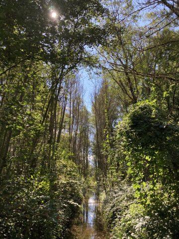 petit canal en direction de Pont Rouge