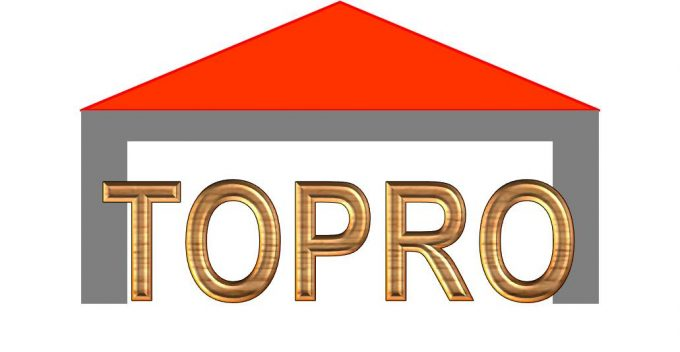 Logo Topro services